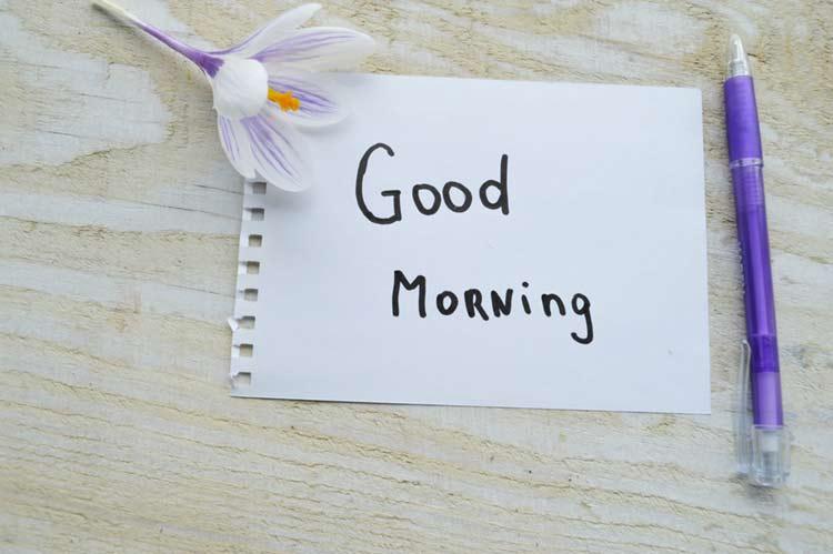 Good morning flowers wish