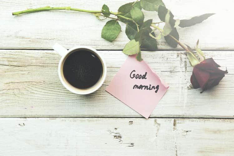 Good morning rose for gf