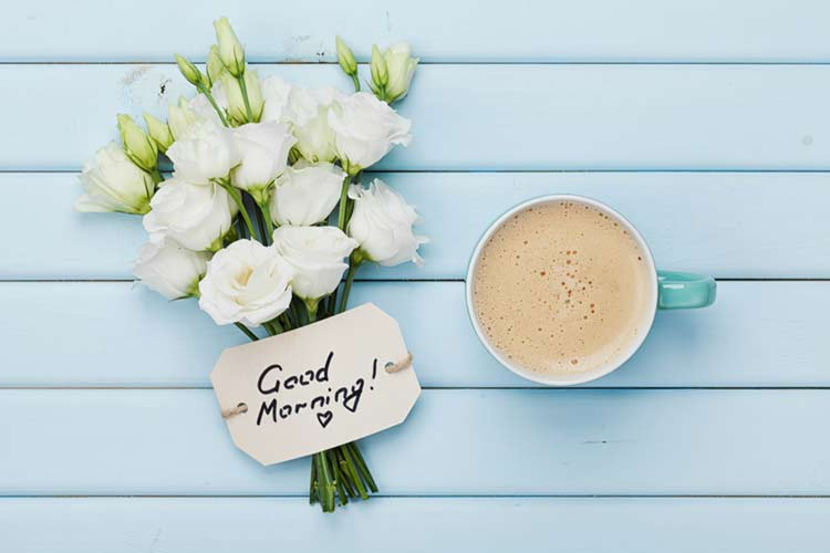 Good morning white roses with quotes coffee