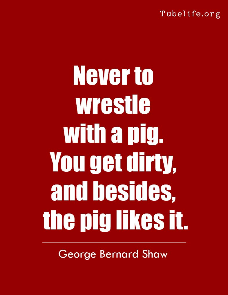 Inspirational Quote George Bernard