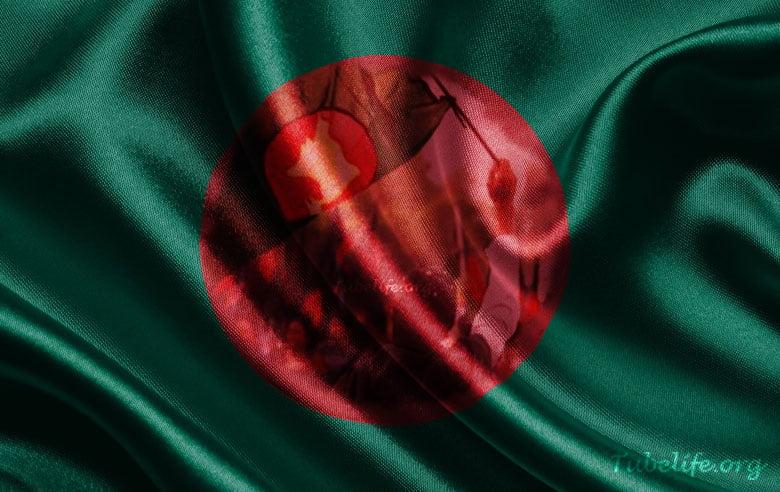 Bangladesh Flag Profile Picture
