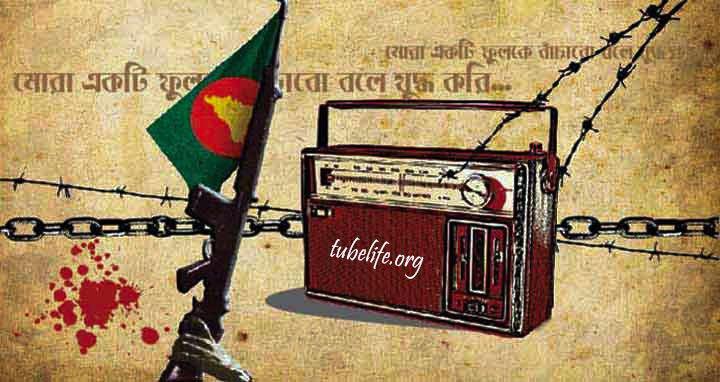 Shadhinota Dibosh Kobita