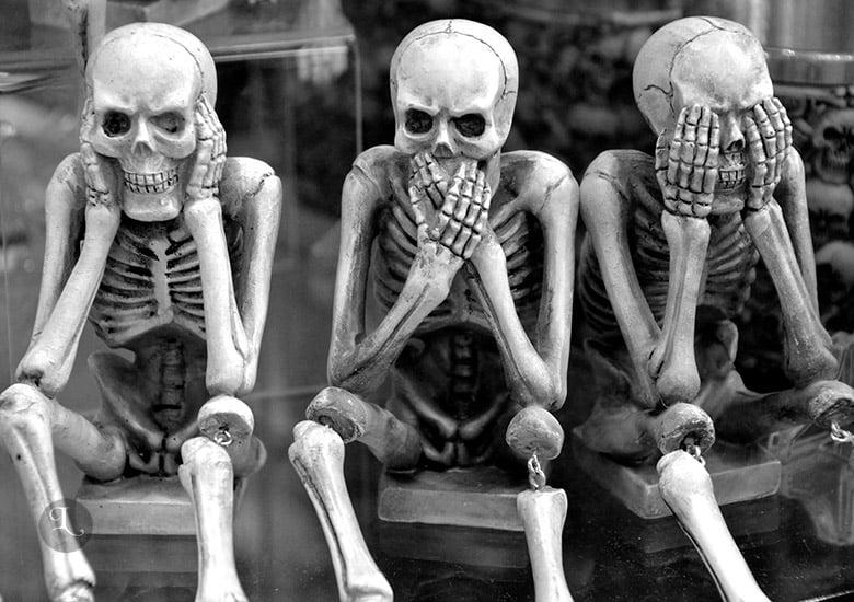 Halloween Wallpaper aesthetic skeleton