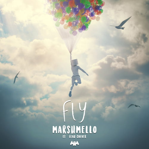 FLY by Marshmello ft Leah Culver Lyrics