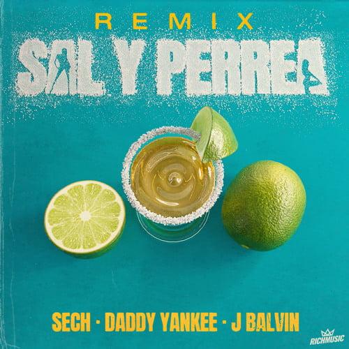 Sal y Perrea Remix by Sech Daddy Yankee J Balvin Lyrics
